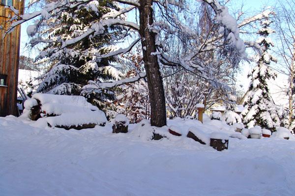 winter_auf_dem_birkenhof